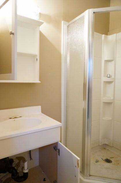 Beechwood Flip - Before - HomeWork Design Co.